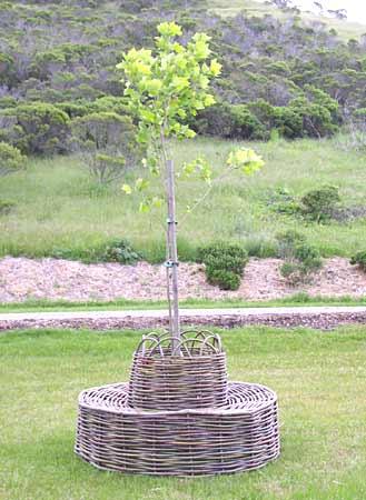Tree_chair