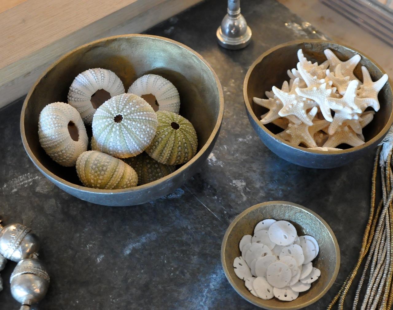 sea urchin decor.htm giannetti home transitioning into autumn velvet   linen  transitioning into autumn