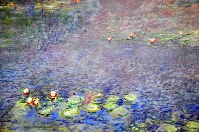 Waterlilies_0410_ 333