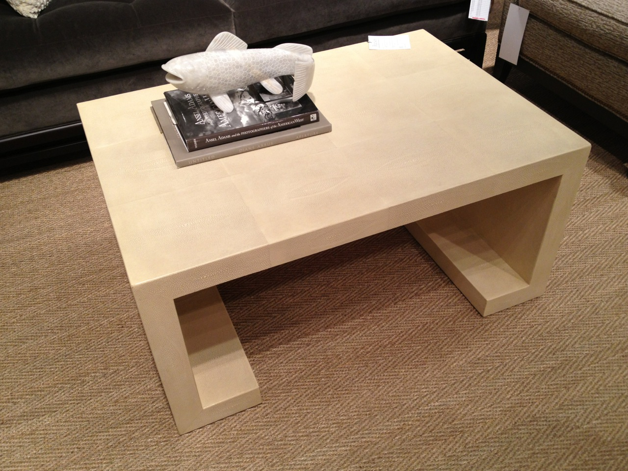 Another Pretty Shagreen Ivory Coffee Table. IMG_1966 .