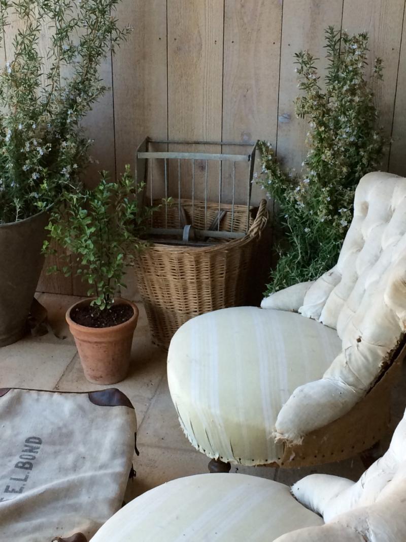 patina farm: veggie garden #GiannettiHome