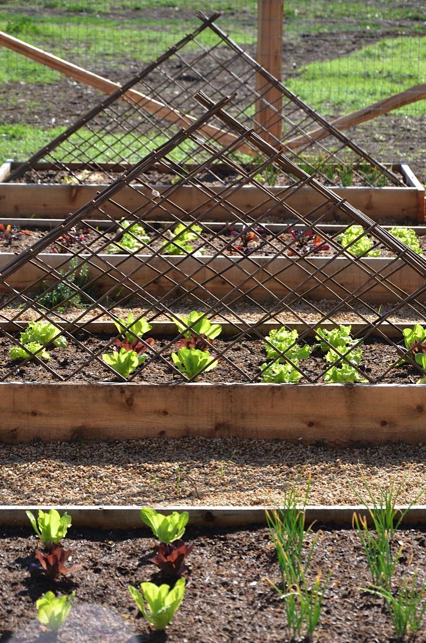 a weekend in the garden at patina farm... - Velvet & Linen