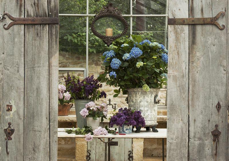 Ruth_greenhouse1
