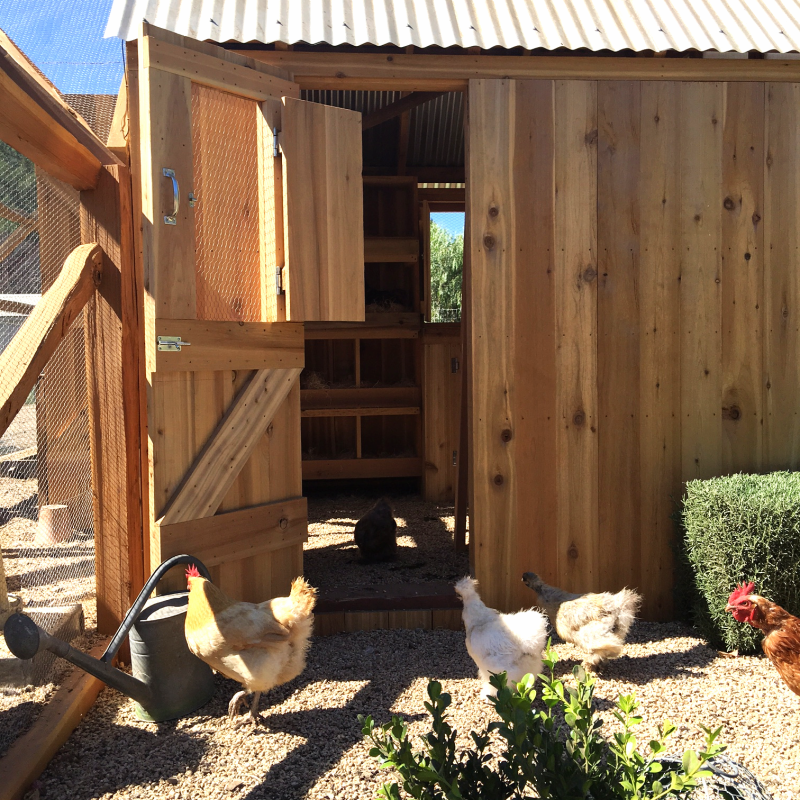 Patina Farm: Chicken Coop