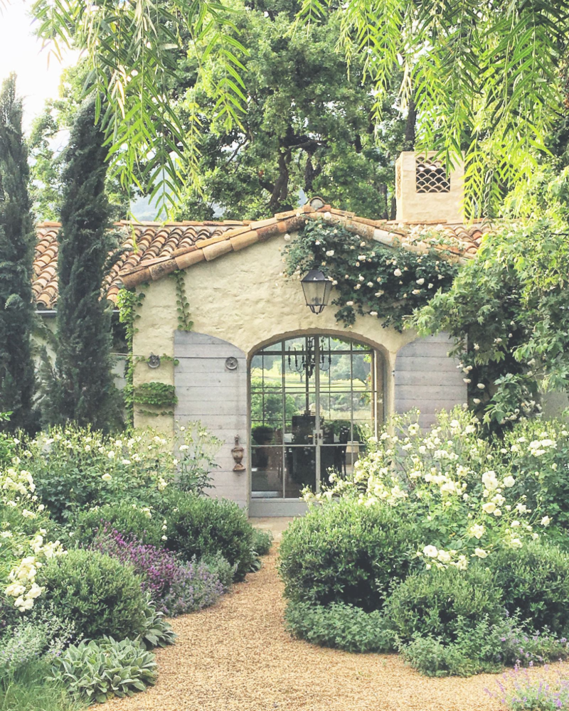 Patina Farm: White Floribunda and New Dawn Roses